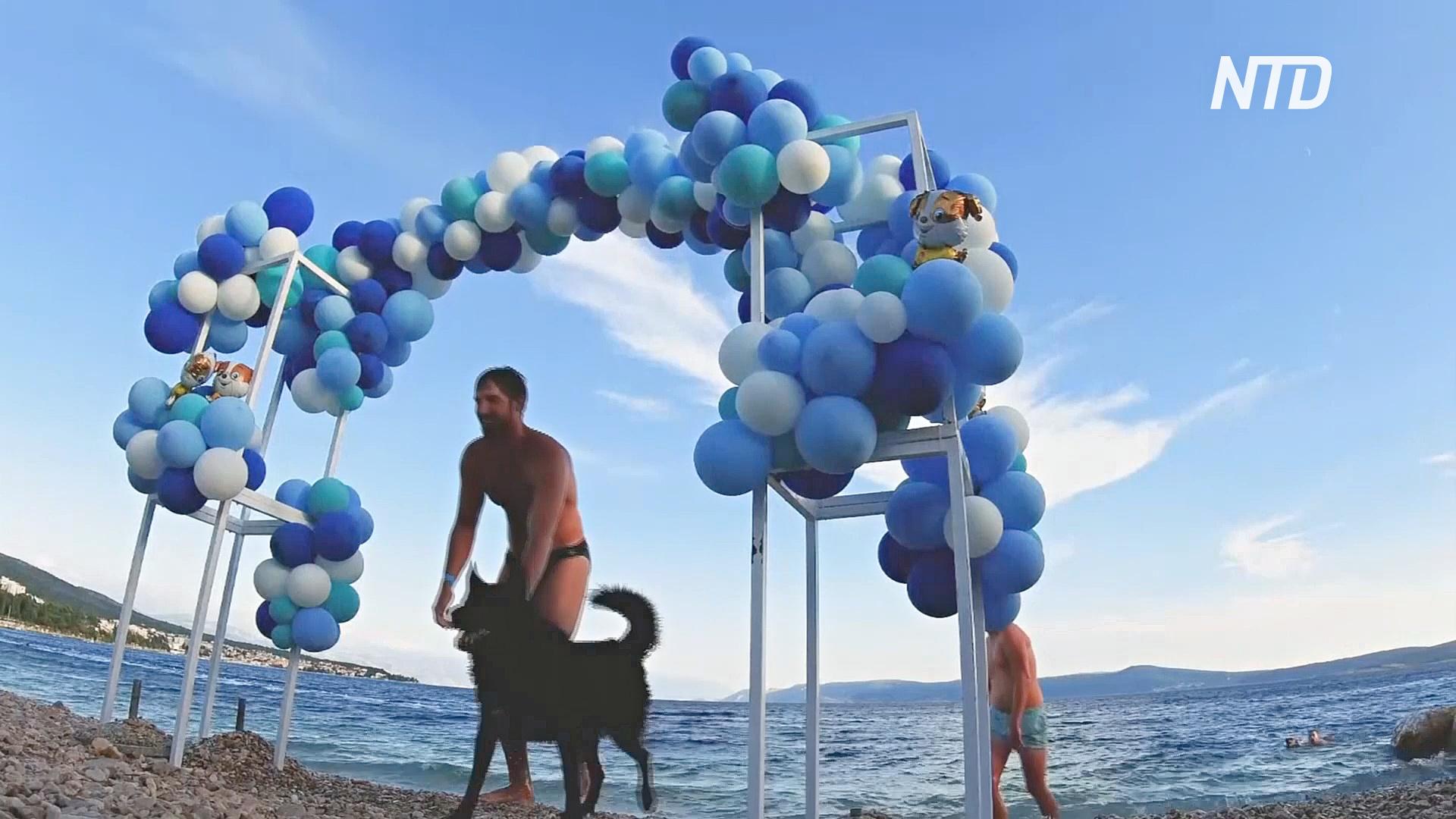 Триатлон для собак и их хозяев устроили на пляже в Хорватии