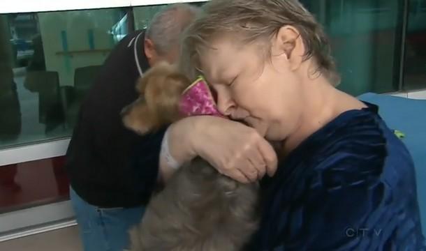 8 1 - Домашние питомцы навещают хозяев в больнице