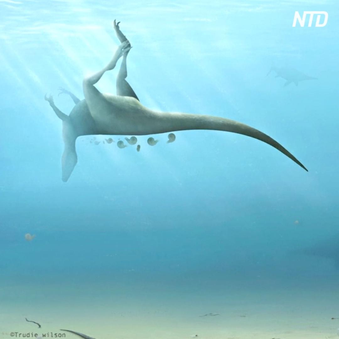 Новый вид динозавров открыли британские учёные