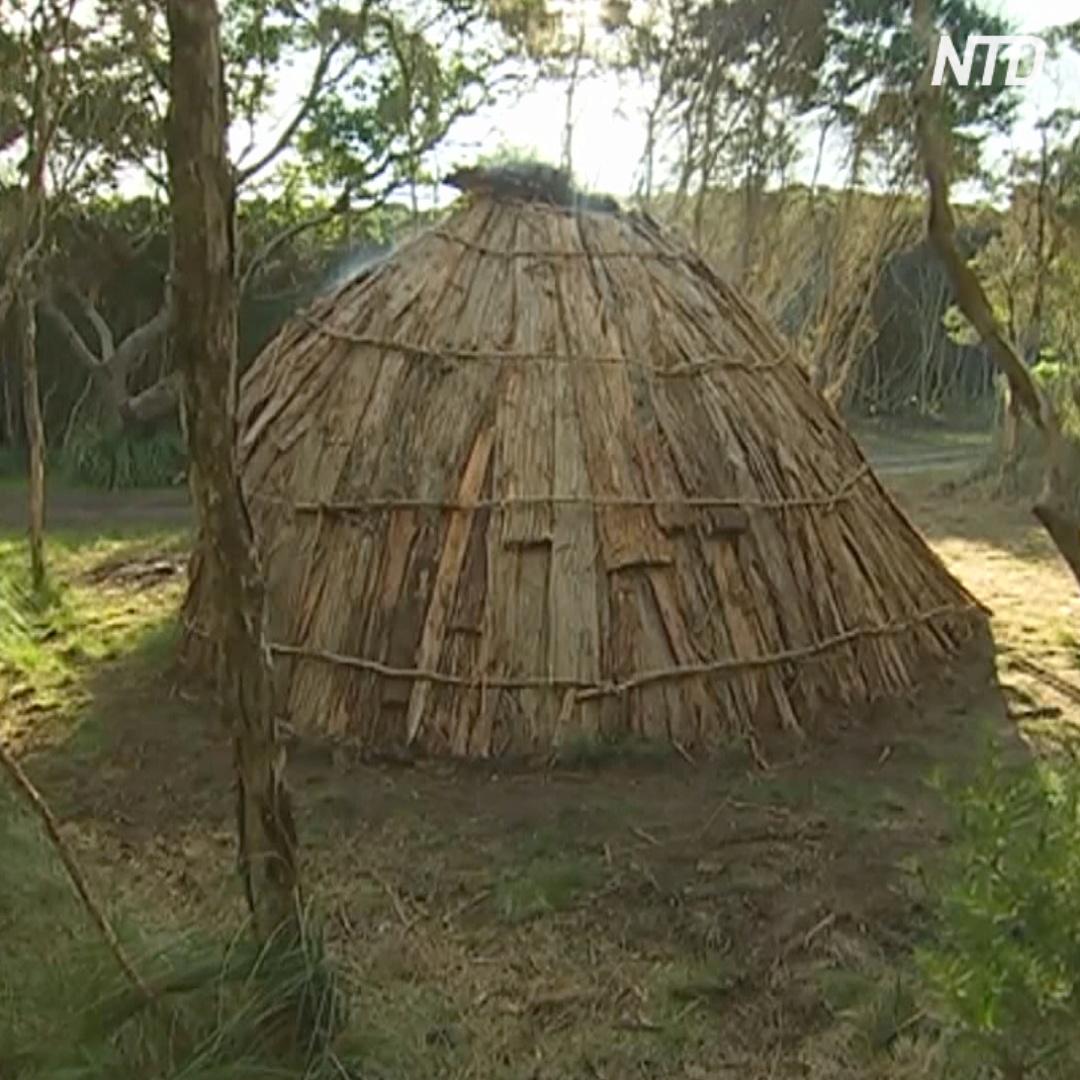 В Тасмании воссоздают шалаши аборигенов