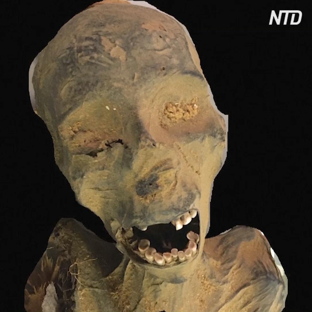 «Кричащие» мумии: египтологи раскрыли их тайну