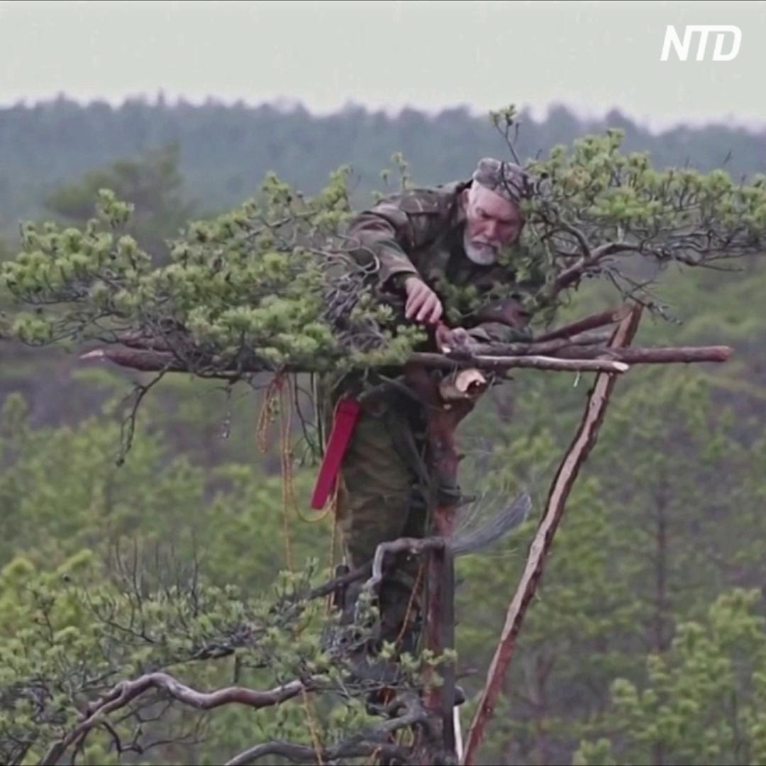 Белорусский орнитолог строит для хищных птиц гнёзда