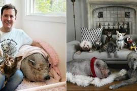 Десять старых собак помогли мужчине избавиться от депрессии