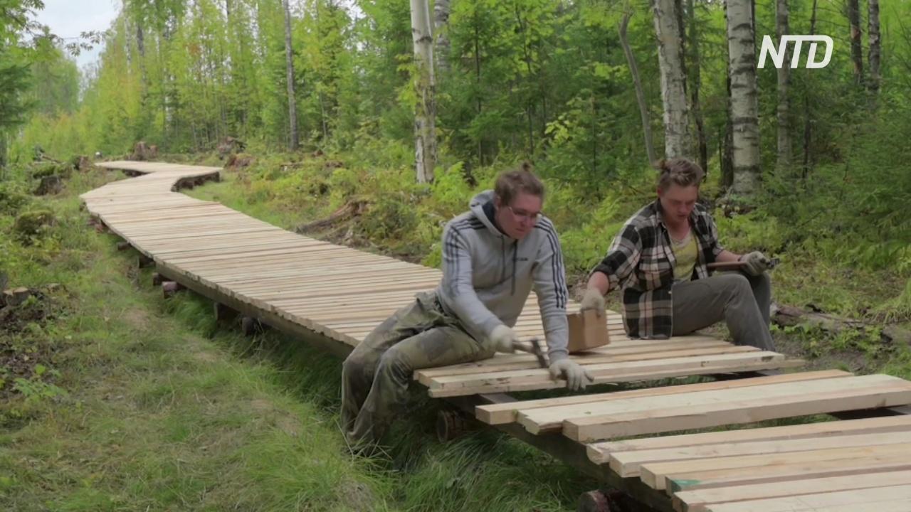 К месту легендарной посадки «Восхода-2» в Пермском лесу проложили мостки
