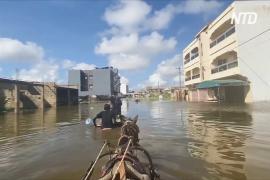 «Там змеи и крокодилы»: сенегальцы не могут вернуться в дома после сильнейшего ливня