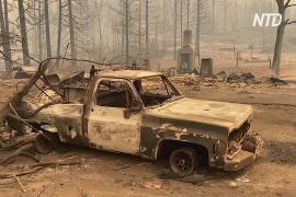 Лесные пожары в Калифорнии выжгли территорию в 9000 кв. км