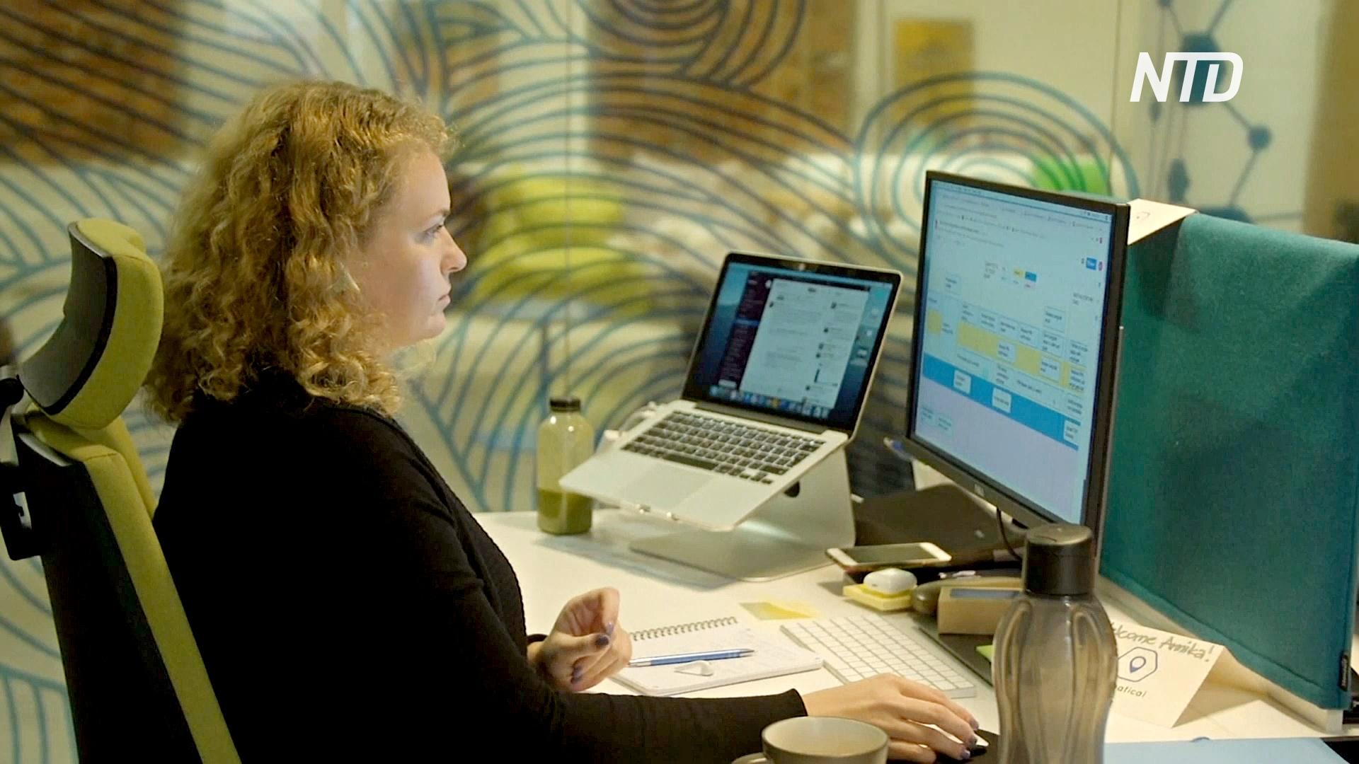 Эстония вводит новый вид виз для «цифровых кочевников»