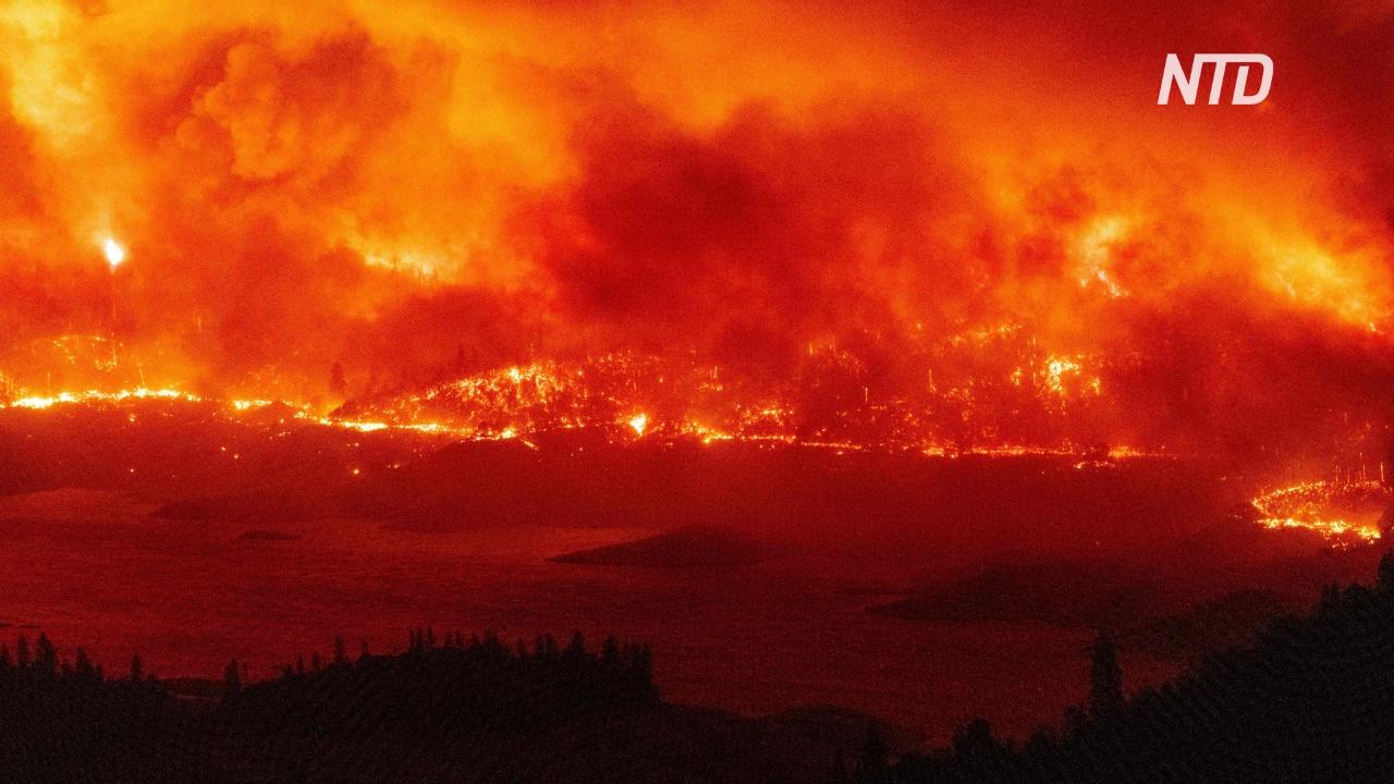 Беспрецедентные лесные пожары охватили всё Западное побережье США