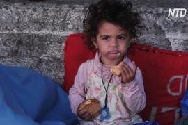 Мигранты на острове Лесбос после пожара не хотят селиться во временном лагере