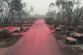 Лесные пожары в США: 35 погибших