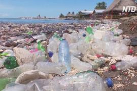 Цунами из мусора обрушилось на пляж в Гондурасе
