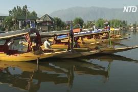 Кашмир привлекает туристов гонками на шикарах на озере Дал