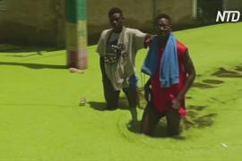 Сенегальцы, пострадавшие от наводнения, недовольны отсутствием поддержки от правительства