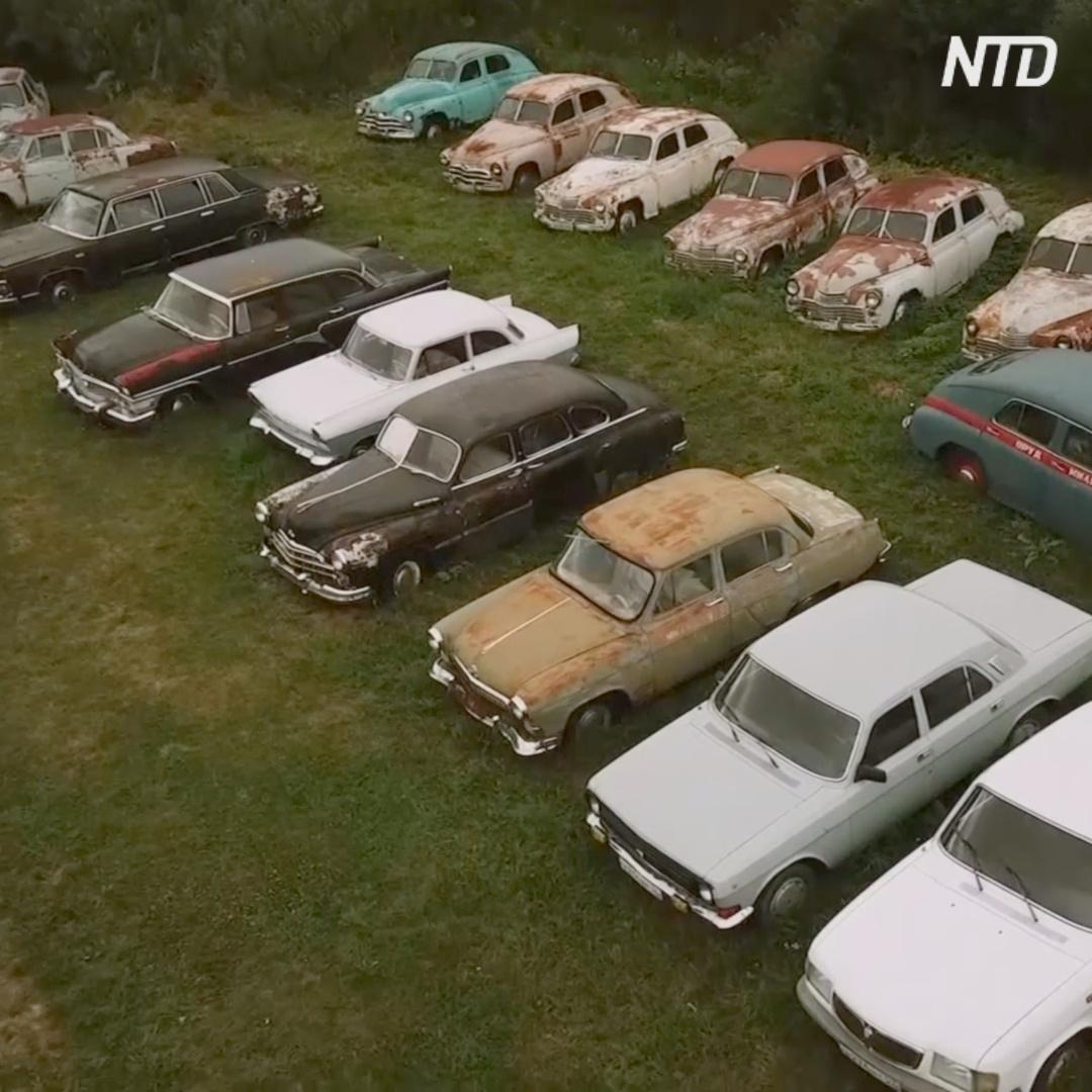 Российский владелец 300 ретроавтомобилей ищет преемников
