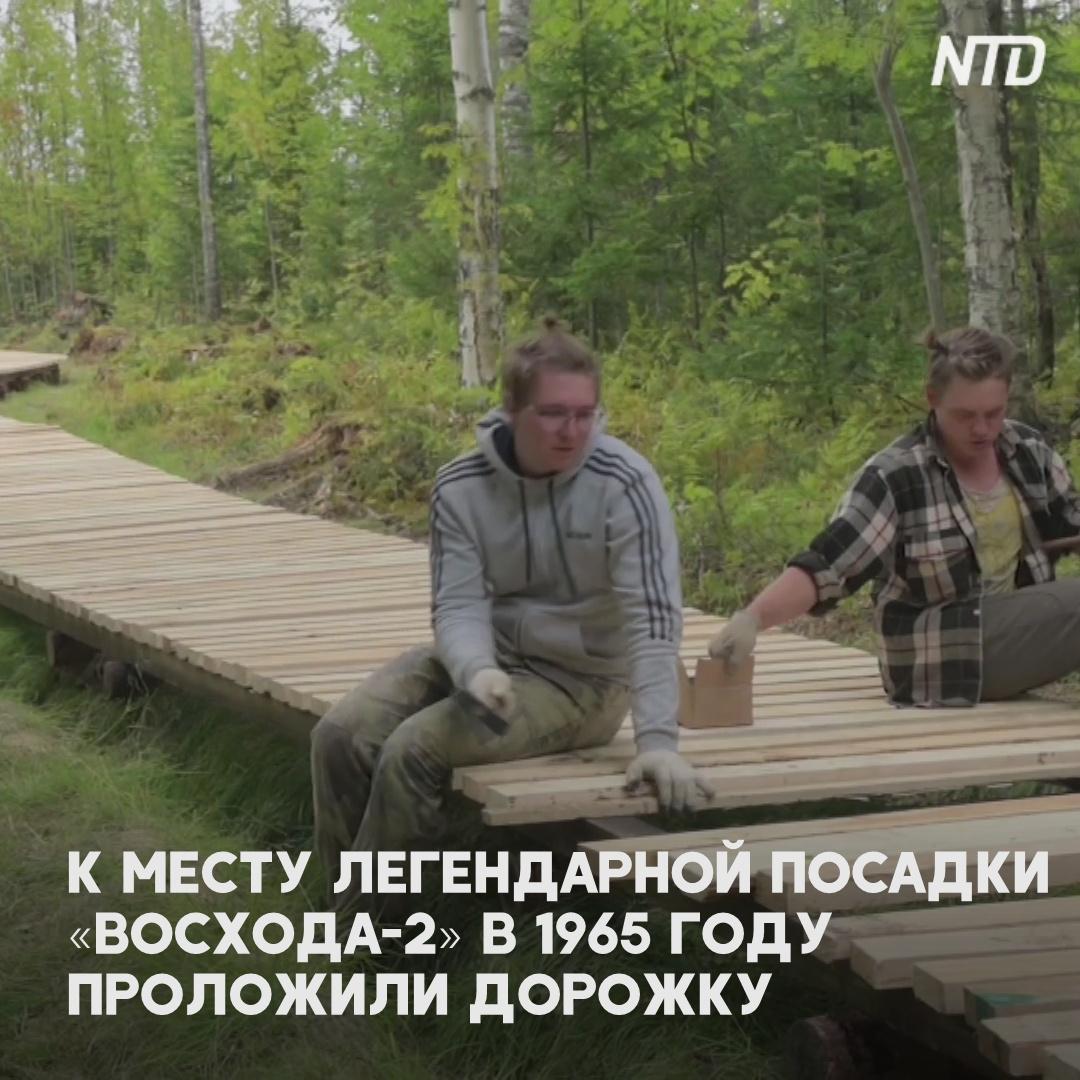 К месту легендарной посадки «Восхода-2» в Пермском лесу теперь ведёт дорожка