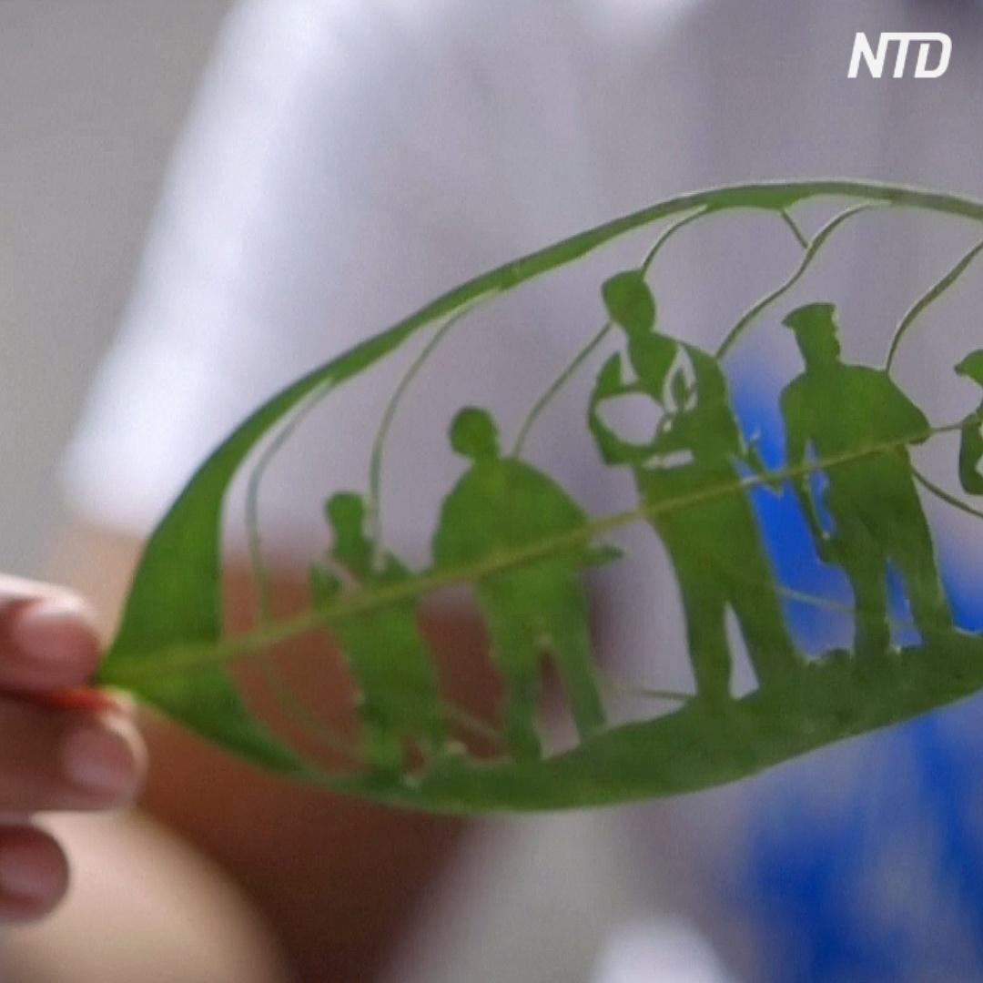 Карантинное искусство: филиппинка вырезает картины на зелёных листьях