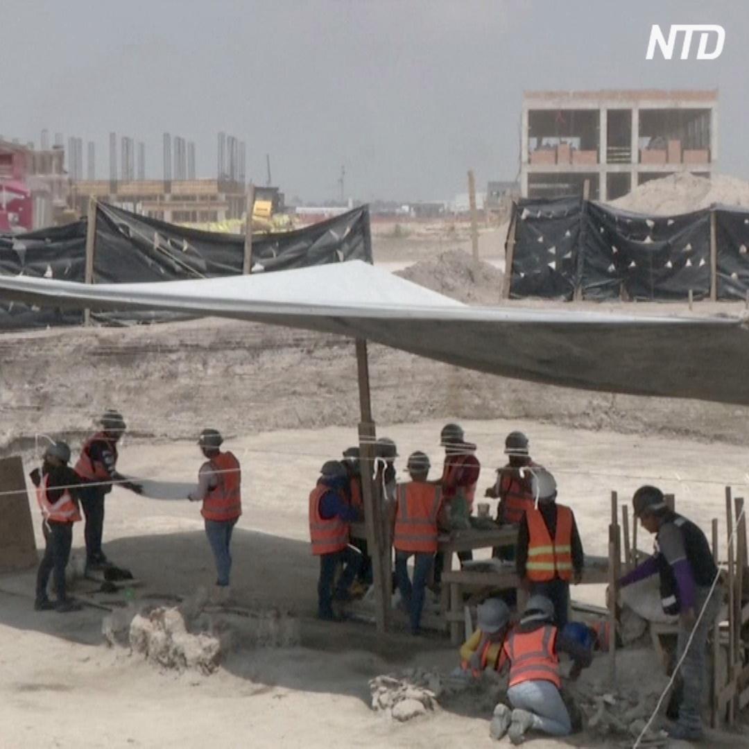 100 скелетов мамонтов откопали на месте строящегося аэропорта