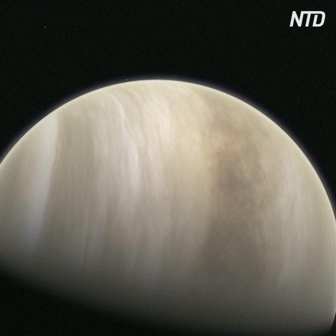Есть ли жизнь на Венере? Ответ может дать новое открытие