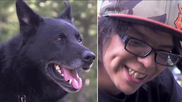 Пёс два дня защищал раненого подростка от койотов