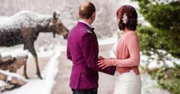Кто стал неожиданным гостем на свадьбе