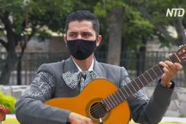 Онлайн-формат Фестиваля мариачи открыл для музыкантов новые возможности