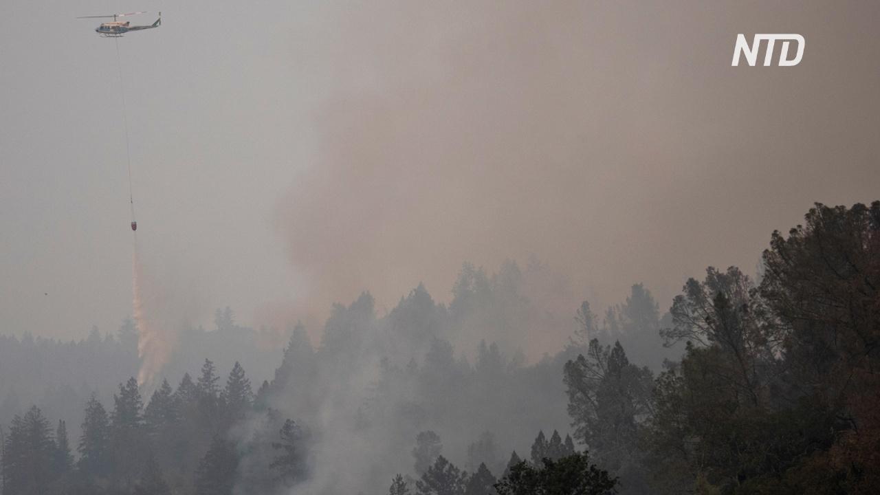 Лесной пожар Glass Fire в Калифорнии охватил уже более 20 тысяч гектаров