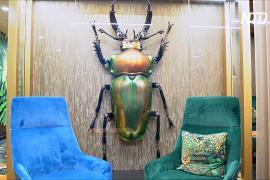 Воздушные шары и гигантские жуки: как людей завлекают обратно в офисы