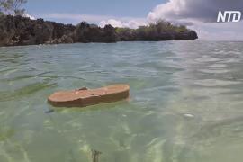 Уникальный атолл Альдабра завален рыболовными сетями и шлёпанцами