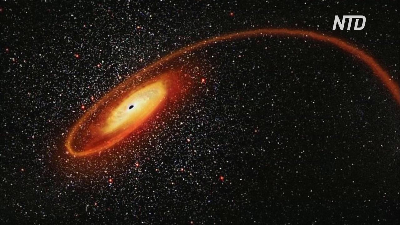 Нобелевскую премию по физике присудили за изучение чёрных дыр