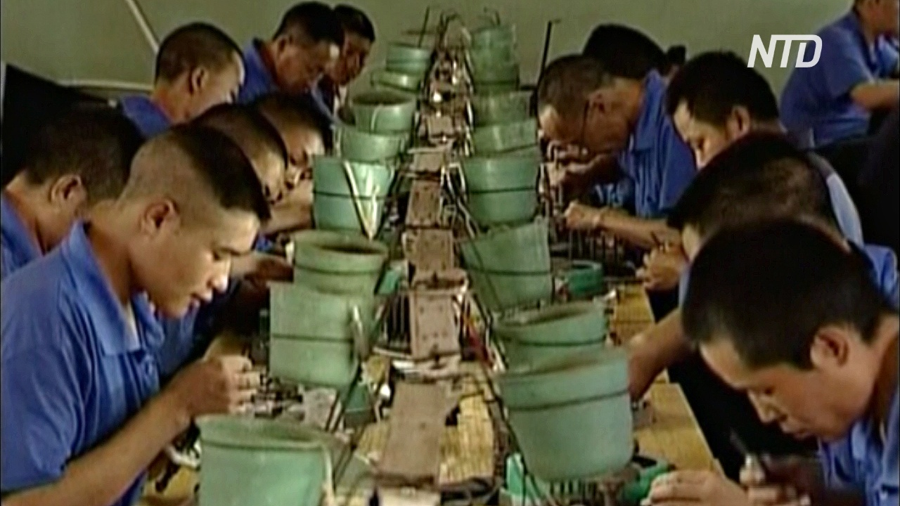 У глав многих китайских компаний есть вторая должность – начальник местной тюрьмы