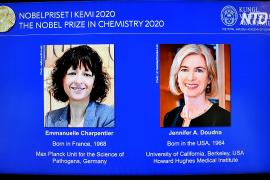 Нобелевскую премию по химии присудили за открытие «генетических ножниц»