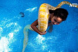 Лучшие друзья: 8-летняя девочка плавает с питоном в бассейне