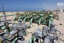 ОПЕК прогнозирует замедление спроса на нефть к концу 30-х годов