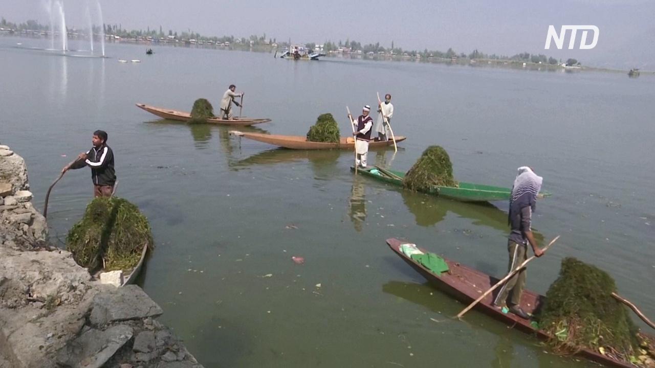 Кашмирское озеро Дал очищают от мусора в ожидании туристов