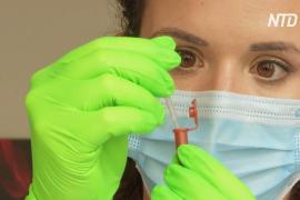 Во Франции испытывают высокоточный тест на COVID-19 на основе слюны