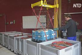 Дизайнерскую мебель и стройматериалы в Бельгии делают из мусора