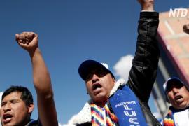 В Боливии вернулись к власти социалисты, люди протестуют