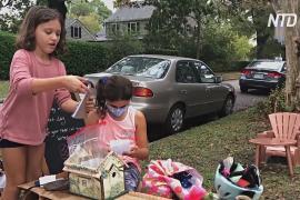 Почта фей под деревом: писательница создала сказку для детей, скучающих на карантине
