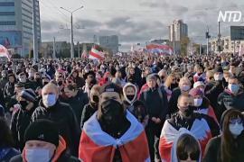 Премию им. Сахарова присудили белорусской оппозиции