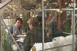 Немецкий ресторан предлагает гостям столики в отдельных стеклянных кабинках