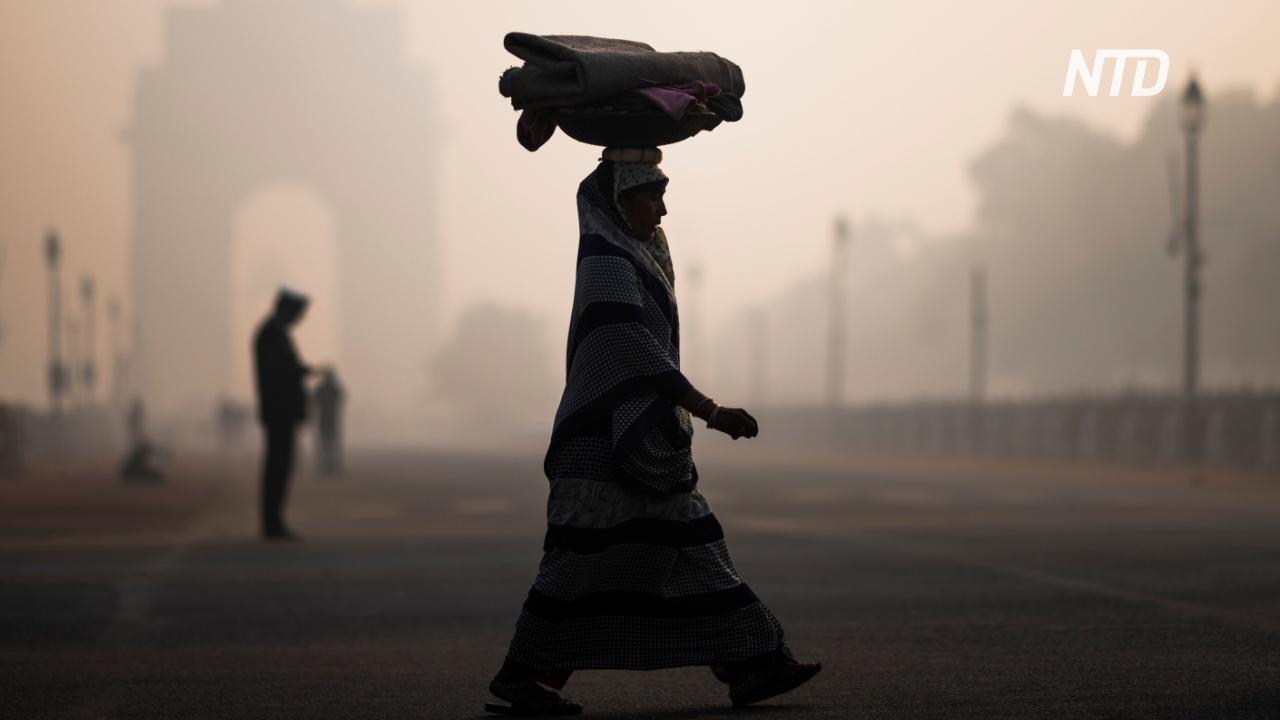 Жители Нью-Дели – о смоге: «Наш город превратился в газовую камеру»