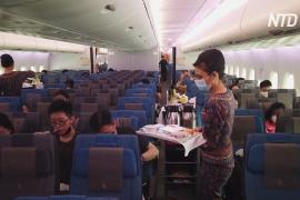 Вместо воздушных путешествий сингапурцам предлагают поесть в авиалайнере
