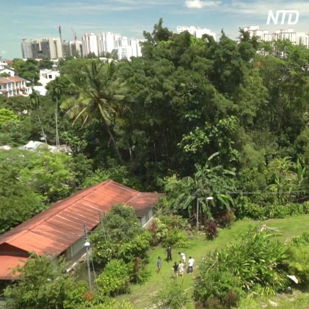Как выглядит последняя деревня Сингапура