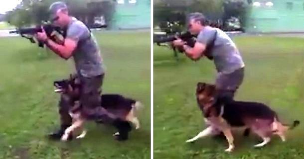 Тактическая подготовка превратилась в танец с собакой. Весёлое видео