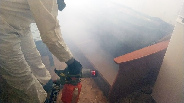 Обработка горячим туманом