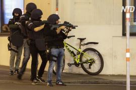 Канцлер Австрии: «Несомненно, это теракт»