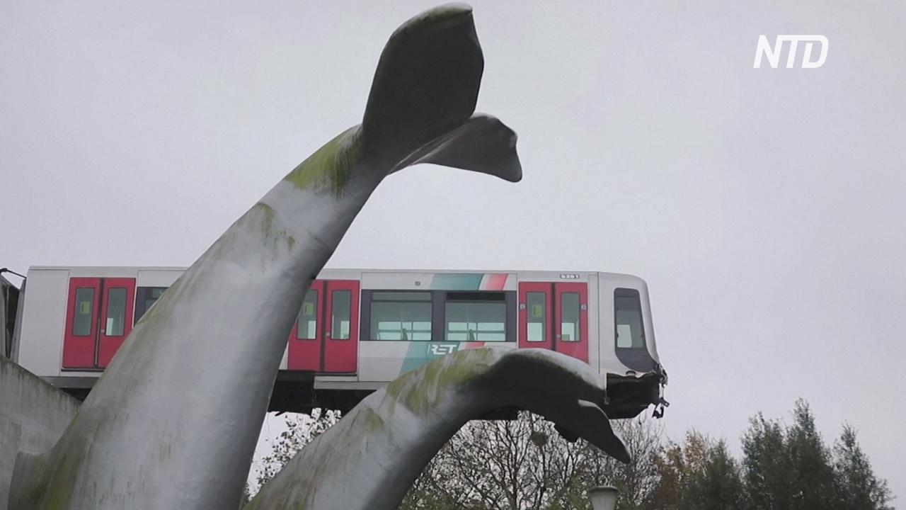 Вагон приземлился на хвост кита: необычная авария в Нидерландах