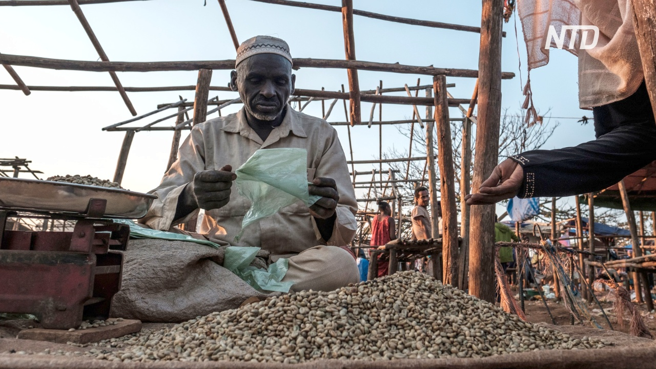 Кофе с эфиопских холмов продают в высшем свете Лондона