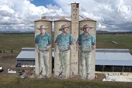 Гигантские муралы в Австралии: на зернохранилище нарисовали «предсказателя» воды
