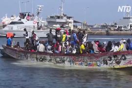 Канарские острова заполонили тысячи нелегальных мигрантов